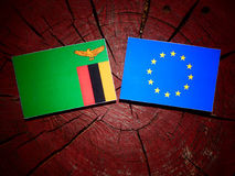 Zambian flag with EU flag on a tree stump isolated. Zambian flag with EU flag on a tree stump Stock Photos