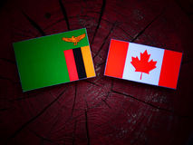 Zambijska flaga z kanadyjczyk flaga na drzewnym fiszorku odizolowywającym zdjęcia stock