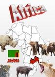 Zambiowie kartografują z flaga i zwierzętami Fotografia Royalty Free