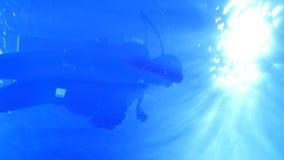 Zambulliéndose, tiroteo subacuático, chapoteo del agua en un día de verano soleado metrajes