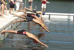 Zambullida de la raza de la natación Foto de archivo libre de regalías