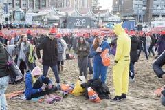 Zambullida del Año Nuevo en Scheveningen 2018 Foto de archivo libre de regalías