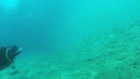 Zambullida del descubrimiento en Grecia 3 almacen de metraje de vídeo
