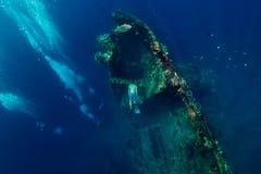 Zambullida del hombre de Freediver bajo el agua en el naufragio en Bali Freediving fotografía de archivo