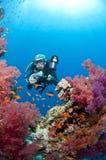 Zambullidor con la cámara, foto subacuática, Mar Rojo Imágenes de archivo libres de regalías
