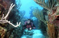 Zambullidor de equipo de submarinismo de la mujer en Roatan Fotografía de archivo libre de regalías
