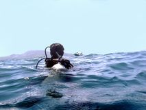 Zambullidor de equipo de submarinismo flotante Imágenes de archivo libres de regalías