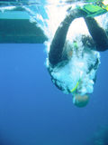Zambullidor de equipo de submarinismo que golpea el agua Imagen de archivo