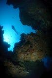 Zambullidor de equipo de submarinismo sobre la barranca subacuática Foto de archivo libre de regalías