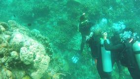 Zambullidor de equipo de submarinismo subacuático almacen de metraje de vídeo