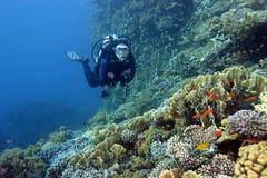 Zambullidor de equipo de submarinismo y el filón coralino Fotos de archivo