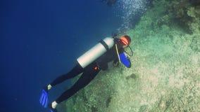 Zambullidor de equipo de submarinismo subacuático fotografía de archivo