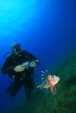 Zambullidor del Lionfish y de equipo de submarinismo Imagen de archivo libre de regalías