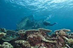Zambullidor que explora el naufragio subacuático. Foto de archivo libre de regalías