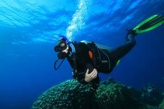 Zambullidores de equipo de submarinismo y filón coralino Fotografía de archivo libre de regalías