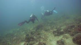 Zambullidores de equipo de submarinismo subacuáticos Filipinas, Mindoro almacen de video