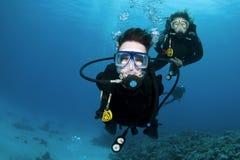 Zambullidores y coral de equipo de submarinismo fotos de archivo libres de regalías