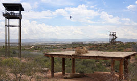 Zamek błyskawiczny linia Z przy Afryka przyrody parkiem obrazy stock