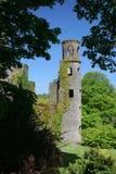 zamek blarney Obraz Royalty Free