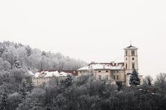 Zamek Cerna Hora Royaltyfri Bild