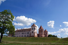 zamek krajobraz widok Obrazy Royalty Free
