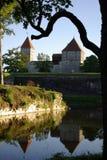 zamek średniowieczny Obraz Royalty Free