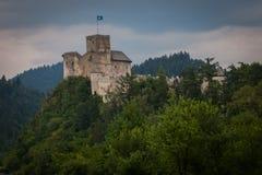 zamek średniowieczny Fotografia Royalty Free