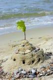 zamek z piasku plaży Obraz Stock