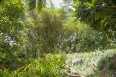 Zamieszka greenery muśnięcia rozmyty olej fotografia royalty free