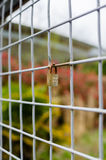 Zamknięta kłódka na Kwadratowym metalu ogrodzeniu - Vertical Zdjęcia Royalty Free