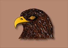 zamknięta orła głowy stojaka pozycja zamknięty Zdjęcie Royalty Free