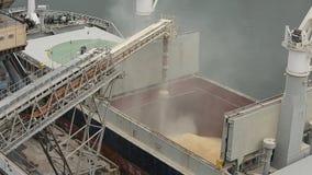 Zamknięta panorama ładuje zbożowe uprawy na masowym freighter przez bagażnika otwierać ładunków chwyty przy silosowym terminal w  zbiory wideo