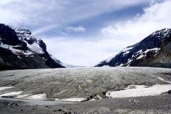 zamknięty athabasca lodowiec Zdjęcie Royalty Free