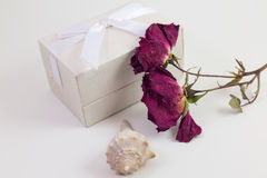 Zamknięty biały prezenta pudełko z wysuszonym kwiatem i seashell z białym tłem Obrazy Royalty Free