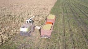 Zamknięty górny widoku żniwiarz nalewa kukurudzy masę w przyczepę zbiory wideo