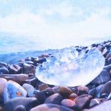 zamknięty jellyfish zamknięty morze Zdjęcie Stock