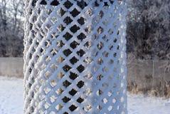zamknięty ochrony zamknięty drzewo Obraz Stock