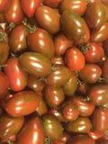 zamknięty rozsypisko zamknięci pomidory Fotografia Stock