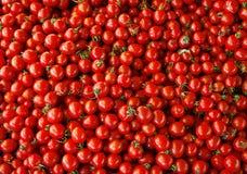 zamknięty rozsypisko zamknięci pomidory obraz royalty free