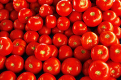zamknięty rozsypisko zamknięci pomidory zdjęcie stock