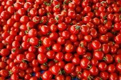 zamknięty rozsypisko zamknięci pomidory zdjęcie royalty free