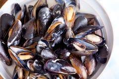 zamknięty zamknięci mussles Zdjęcia Stock