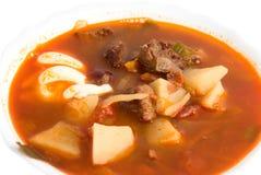 zamknięty zamknięta borscht polewka Fotografia Royalty Free