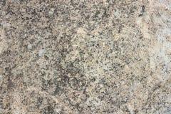 zamkniętego piaska piaskowcowa tekstura Ukraine piaskowcowy izoluje Obraz Royalty Free