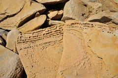 zamkniętego piaska piaskowcowa tekstura Ukraine piaskowcowy izoluje obrazy royalty free