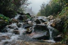 Zamknięty widok skalisty rzeczny basen w mglistym dniu Obrazy Royalty Free