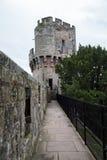 zamku warwick Obraz Royalty Free
