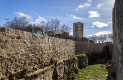 Zamora castle Royalty Free Stock Photo