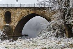 Zamora I freeze river Douro Royalty Free Stock Photo