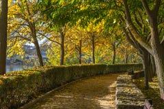 Zamora, park Stock Photo